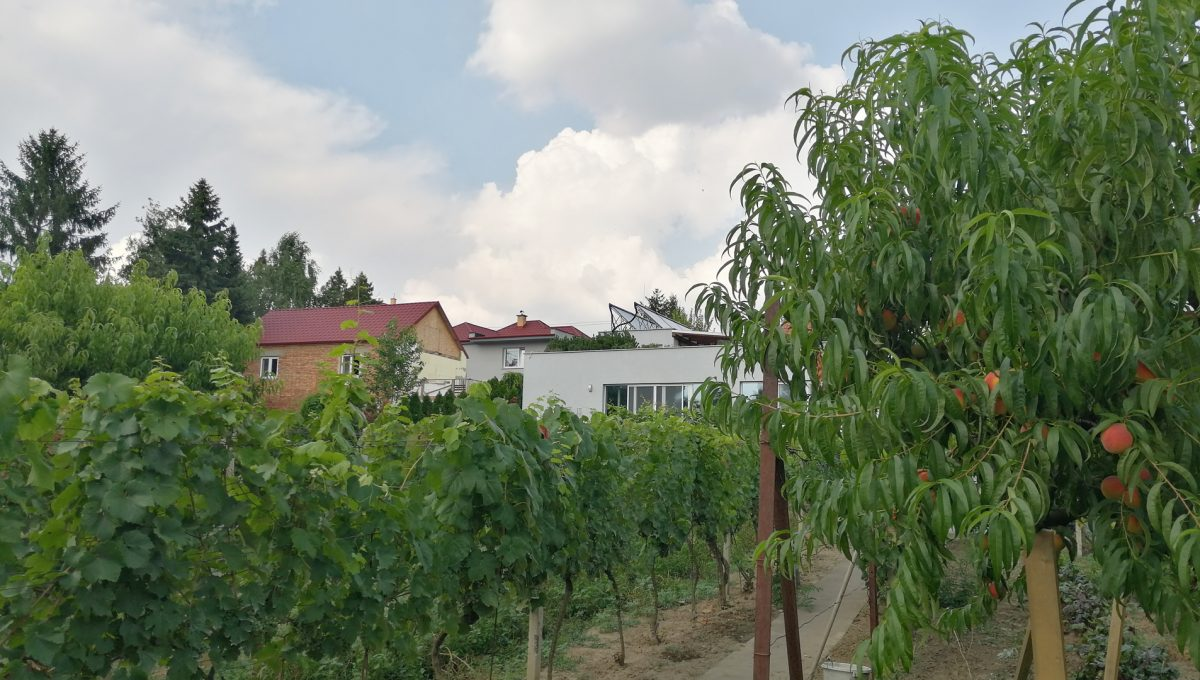Blatne 06 Senec velky rodinny dom velky pozemok pohlad na krasnu zahradu s urodou a cast kryteho bazena