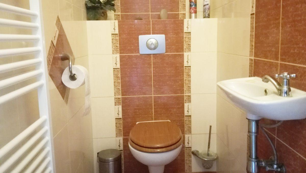 Dunajska-Luzna-12-pekny-4-izbovy-rodinny-dom-na-predaj-pohlad-na-toaletu-s-umyvadlom