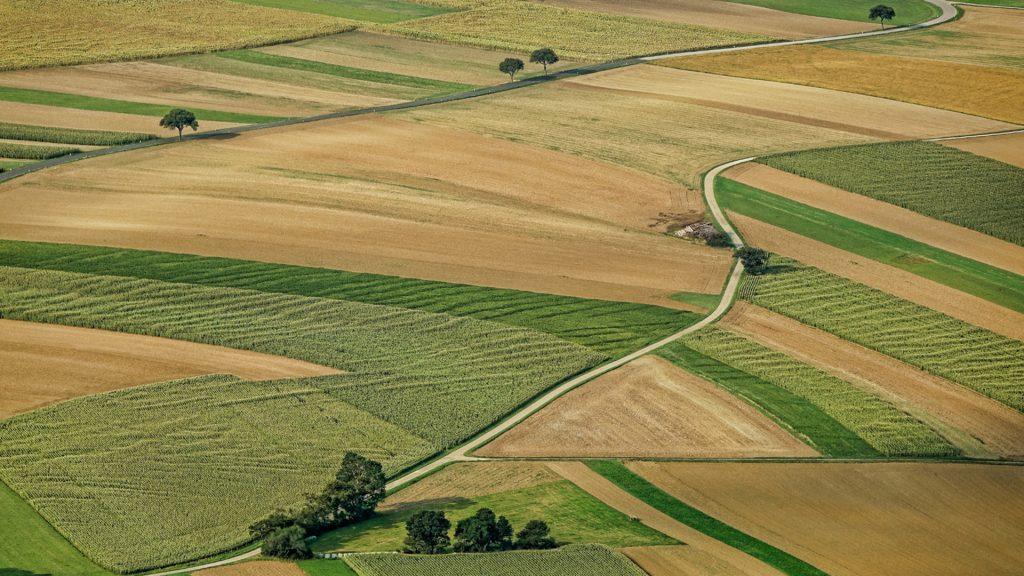 Konfido-hlada-ponuku-pozemkov-na-predaj