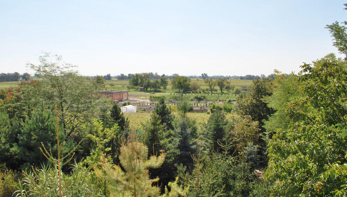 Olca 28 okres Komarno velka rodinna vila s velkym pozemkom a jazierkom vyhlad na okolie domu vily zo stresneho okna