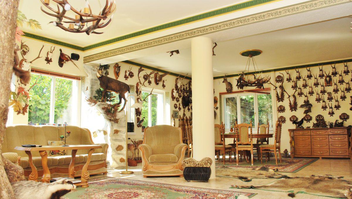 Olca 34 okres Komarno velka rodinna vila s velkym pozemkom a jazierkom pohlad na obyvacku alebo velku spolocensku miestnost na prizemi so zariadenim