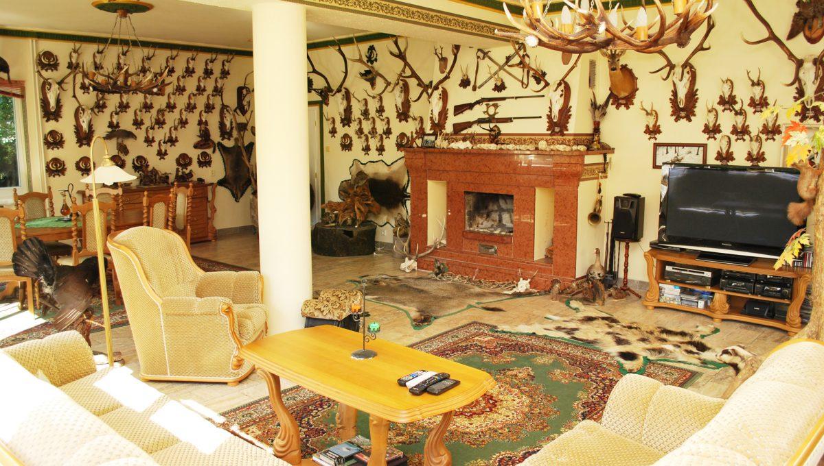 Olca 36 okres Komarno velka rodinna vila s velkym pozemkom a jazierkom pohlad na velku spolocensku miestnost s krasnym krbom na prizemi