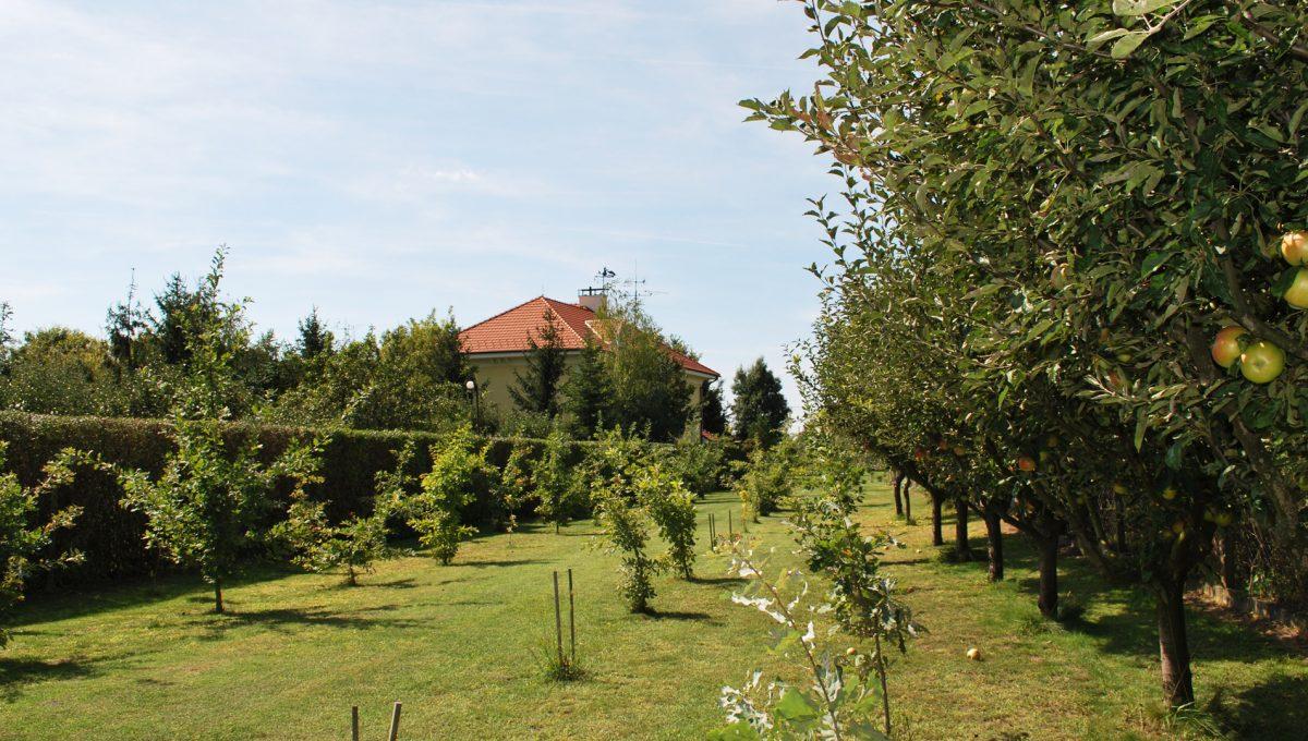 Olca 44 okres Komarno velka rodinna vila s velkym pozemkom a jazierkom pohlad z konca pozemku na cast s ovocnymi stromami a v pozadi je rodinna vila