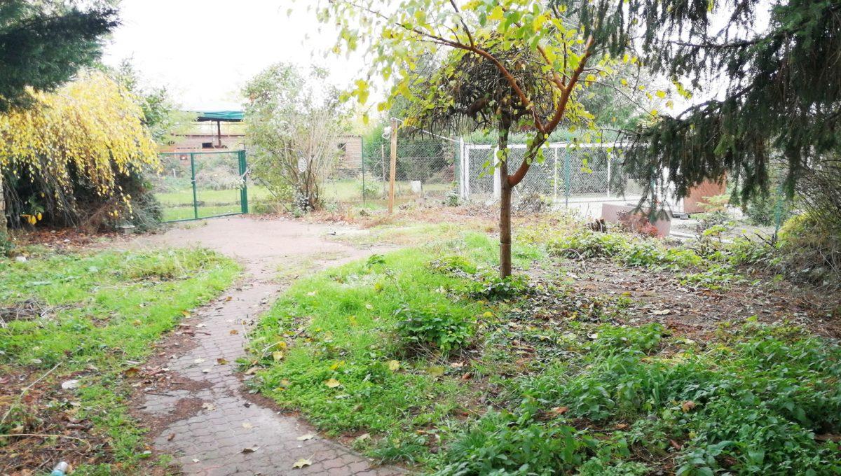 Podunajske Biskupice 01 Bratislava zahrada pohlad na vstup na pozemok a nezastavanu otvorenu cast zahrady
