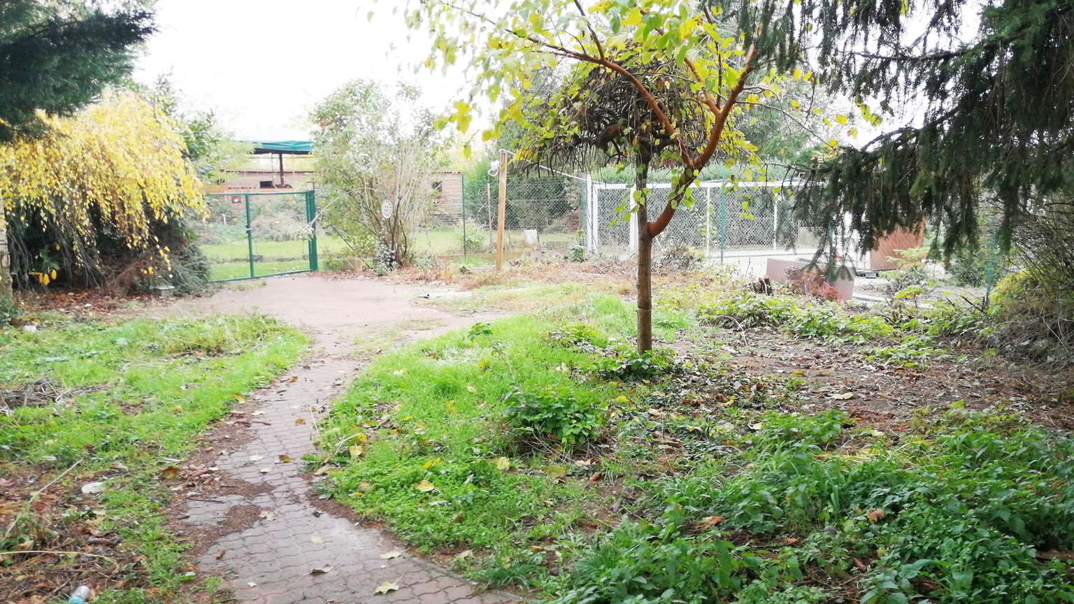 Záhrada 555 m2, Bratislava – Podunajské Biskupice – PREDANÉ