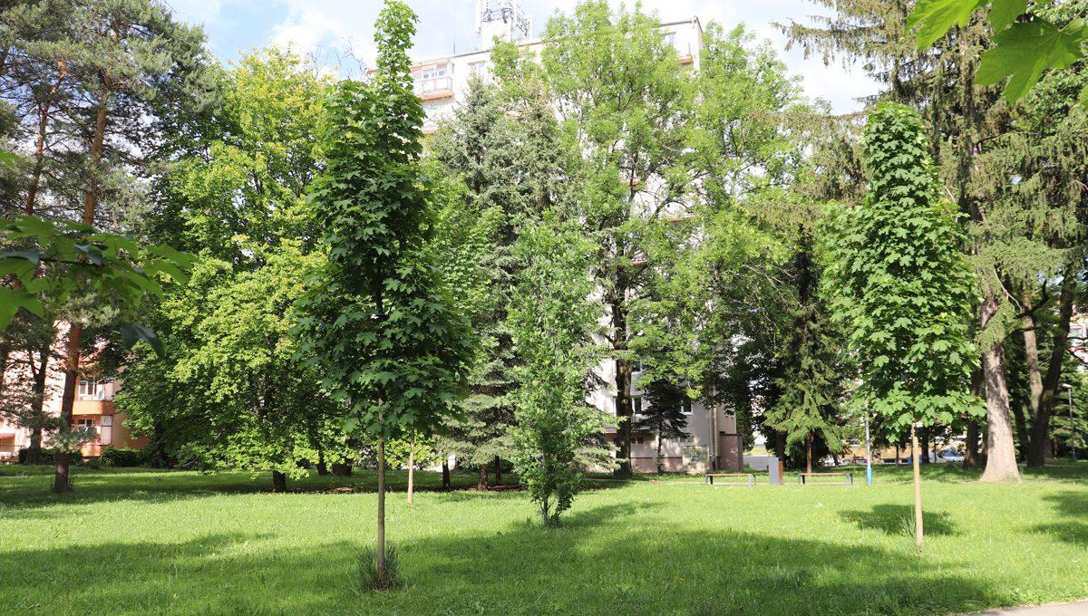 Zvolen 20 na predaj 3 izbovy byt ulica Janka Krala pohlad na cast parku pred bytovym domom