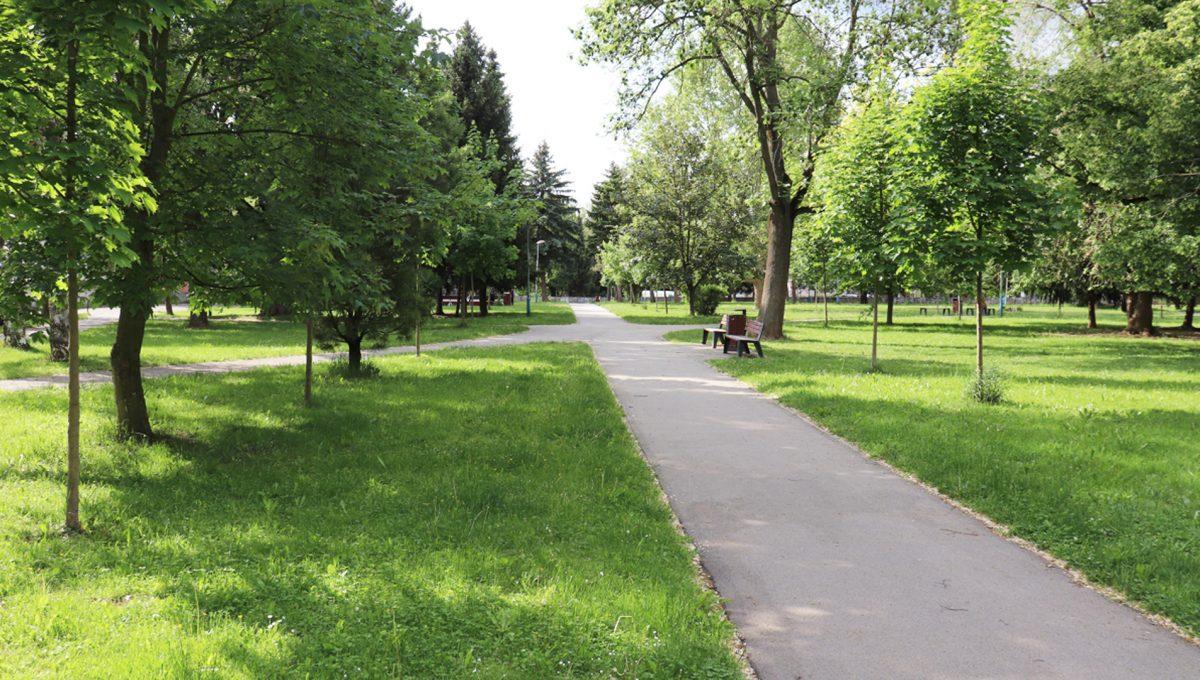 Zvolen 21 na predaj 3 izbovy byt ulica Janka Krala pohlad na park pred bytovym domom a pri fakulte univerzity